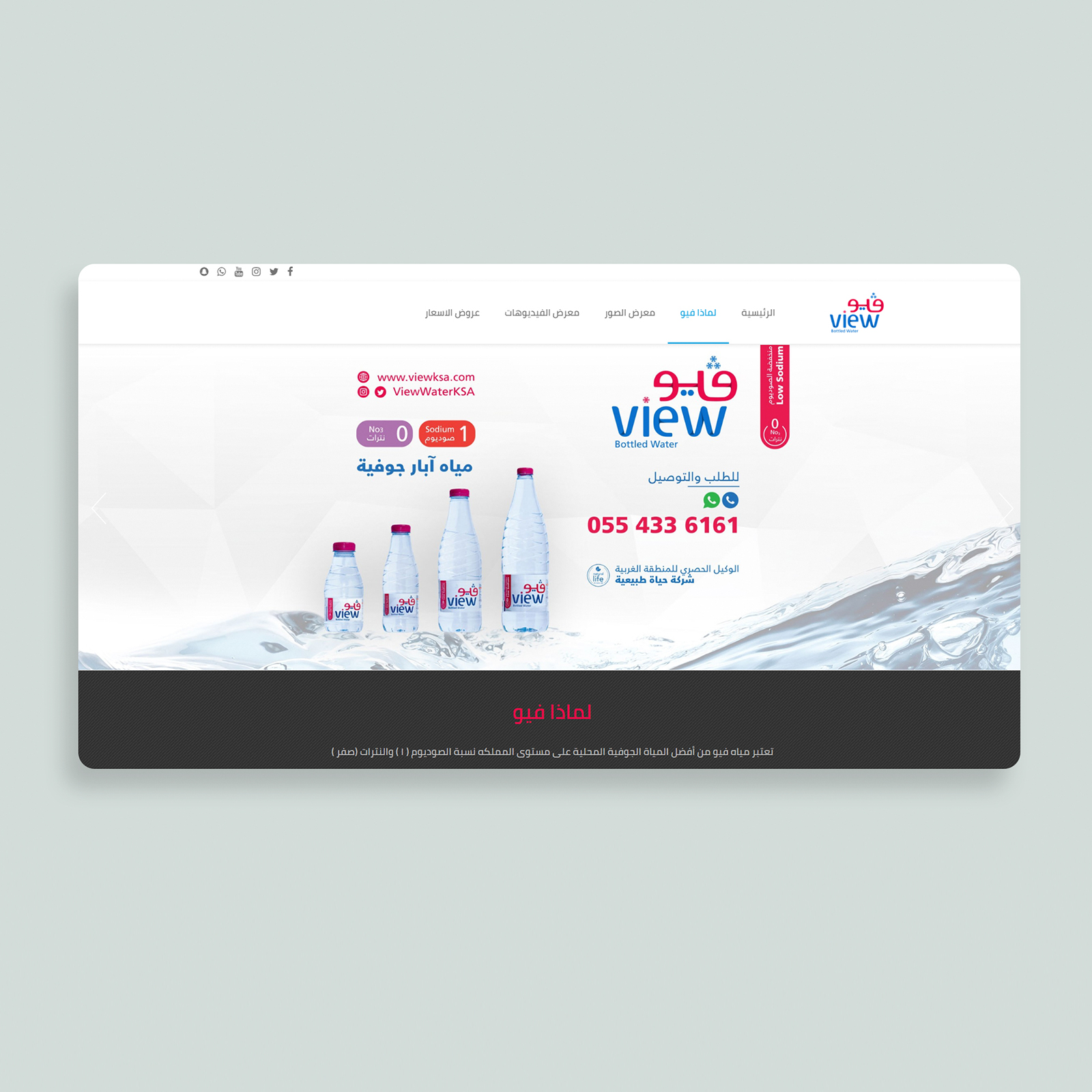 website design view water